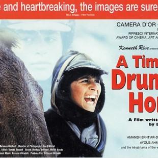 A Time for Drunken Horses (2000)